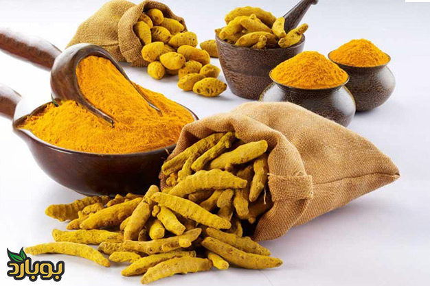 whole-sale-of-tumeric