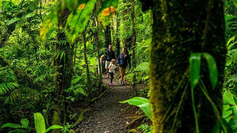 هتل های محیط زیستی1-RESORT COSTA RICA