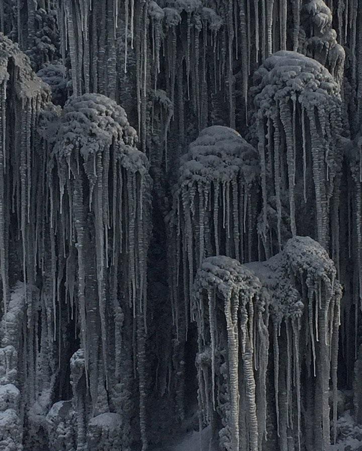 برف سیاه