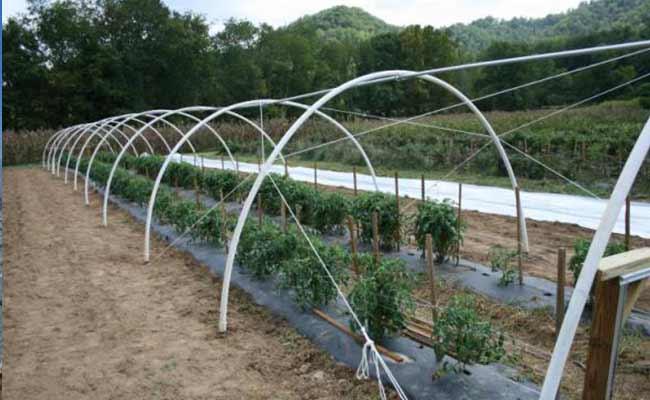 تجهیزات-راه--اندازی-گلخانه
