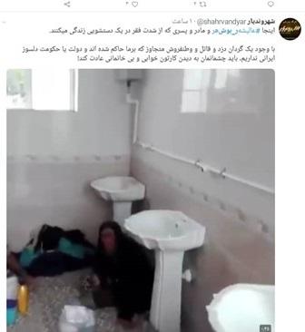 زندگی در دستشویی