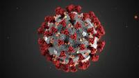 آمار قربانیان ویروس کرونا در ایتالیا به ۷۹نفر افزایش یافت
