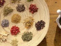 صنعت گیاهان دارویی برند معتبر ندارد