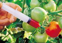 الزامات جدید سازمان غذا و دارو درباره غذاهای تراریخته