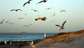 ماهیگران نقطه صفر مرزی +تصاویر