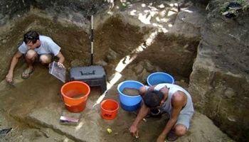 کشف فسیل مارمولک 15میلیون ساله +عکس