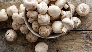 برنامهریزی برای صادرات 30 هزار تن قارچ در سال/ قیمت قارچ در بازار جهانی چقدر است؟
