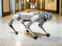 اولین ربات 4پایی که پشتک میزند! +فیلم