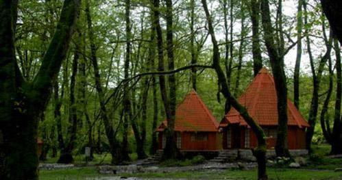 آشنایی با بزرگترین پارک های جنگلی ایران