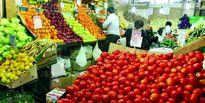 قیمت میوه در جنوب تهران چند؟