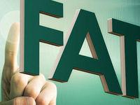 نامه وزیر اسبق اقتصاد به FATF