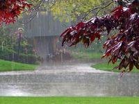 باران مدارس برخی شهرستانهای خوزستان را تعطیل کرد