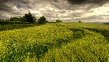 توصیههای زمستانی هواشناسی کشاورزی