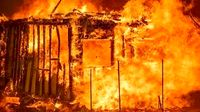 سلبریتیها در محاصره آتش «لسآنجلس» +فیلم