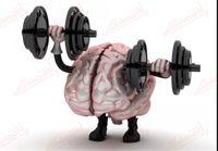 چرا قدرت مغز رو به زوال می رود؟