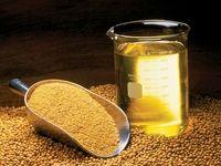 بازی جدید رانتداران صنایع روغنی/ پشت پرده اصرار بر افزایش تعرفه واردات کنجاله دانههای روغنی