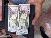 افزایش قیمت ارز در کشور نتیجه عدم نظارت و برنامه ریزی است