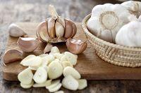 مواد غذایی مفید برای مقابله با سرماخوردگی و آنفلوانزا