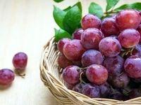 با انگور قرمز به سلولهای سرطانی حمله کنید!