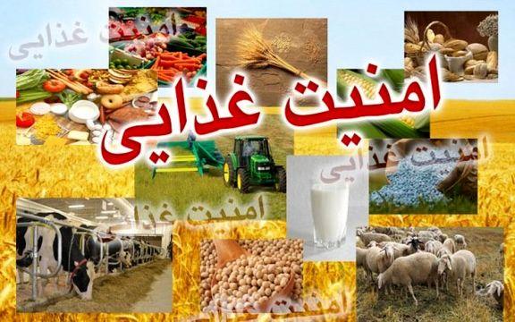 آمار ۵ درصدی ناامنی غذایی در کشور/ قحطی و گرسنگی نداریم
