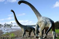 قدیمیترین گونه یک دایناسور کشف شد + عکس