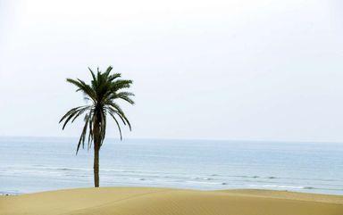 ساحل و روستای شگفت انگیز « دَرَک » زرآباد