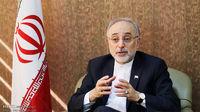 صالحی : مطالبهگری ایران از غربیها ادامه دارد
