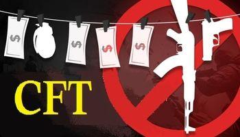 ۲۷ آبان؛ جلسه رفع ایرادات شورای نگهبان به لایحه CFT
