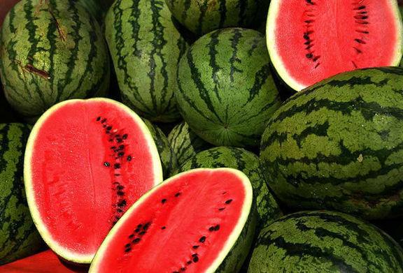بیش از 90هزار تن هندوانه برای شب یلدا به بازار آمد