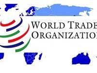 اکنون زمان پیوستن به سازمان جهانی تجارت نیست