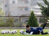 جدیدترین اظهار نظر بیرانوند درباره خداحافظیاش از فوتبال
