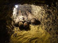 کشف مومیایی موجود بیگانه در مصر