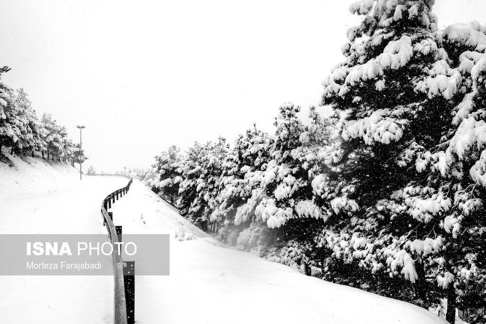 بارش برف