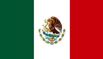 یک فروند هواپیما در مکزیک سقوط کرد