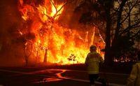 خسارت آتش سوزی استرالیا به شرکتهای بیمهای ۶۴۶میلیون دلارآمریکا است