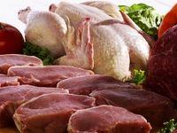 صادرات بیحاصل مرغ