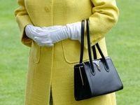راز کیف سیاه رنگ ملکه انگلیس فاش شد +عکس