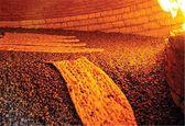 اختصاص ۹۰درصد آرد تولیدی برای تهیه تافتون، سنگک، بربری و لواش/ افت کیفیت گندم در سالهای اخیر