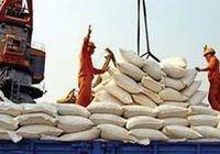 واردات دولتی برنج پارسال افت کرد