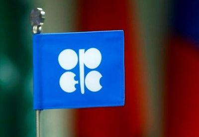 هشدار هند نسبت به کاهش قیمت نفت به اوپک