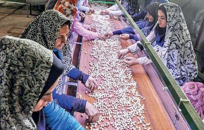 منشا تولید کالای ایرانی در روستاها