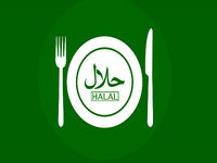 بسترسازی مجلس برای رونق گردشگری حلال