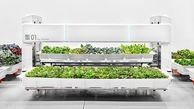 افتتاح مزرعه رباتیک ,کشاورزی بدون نیاز به خاک +تصاویر