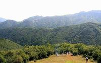 طرح جامع تنفس جنگل در حال اجراست