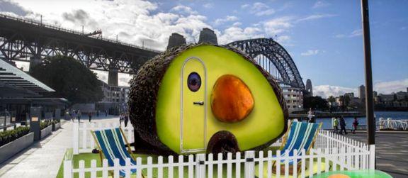 اقامت در هتل آووکادو به مناسبت روز ملی آووکادو در استرالیا +تصاویر