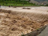 سیلاب، مخربترین حادثه طبیعی در جهان