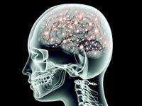 با این روشها قدرت مغز خود را افزایش دهید