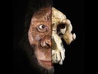 چهره قدیمیترین انسانهای اولیه رونمایی شد +عکس