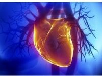 ۶ علامتی که از بیماریهای قلبی عروقی خبر میدهند