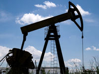 جهش رشد نفت متوقف شد